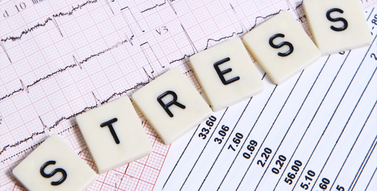 what is stress? negative and positive